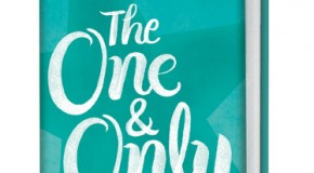 Summer Reading: Emily Giffin's THE ONE & ONLY