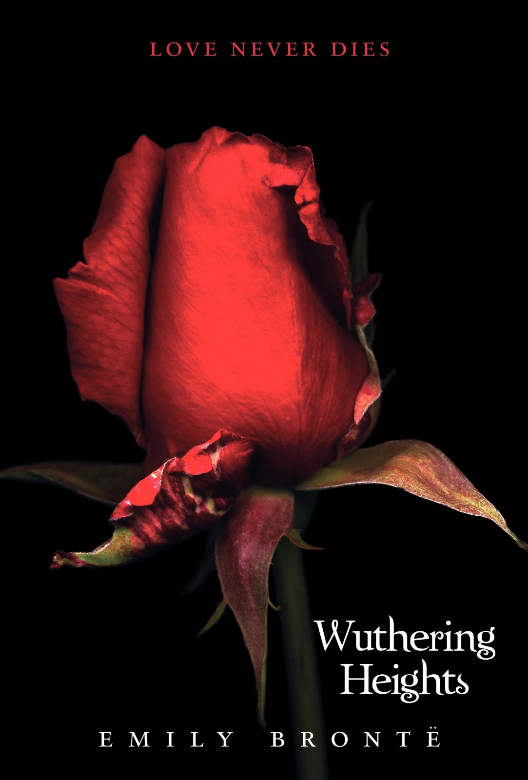 the theme of love in the book the wuthering heights Why wuthering heights shall remain the most passionate love story in literature wuthering heights.